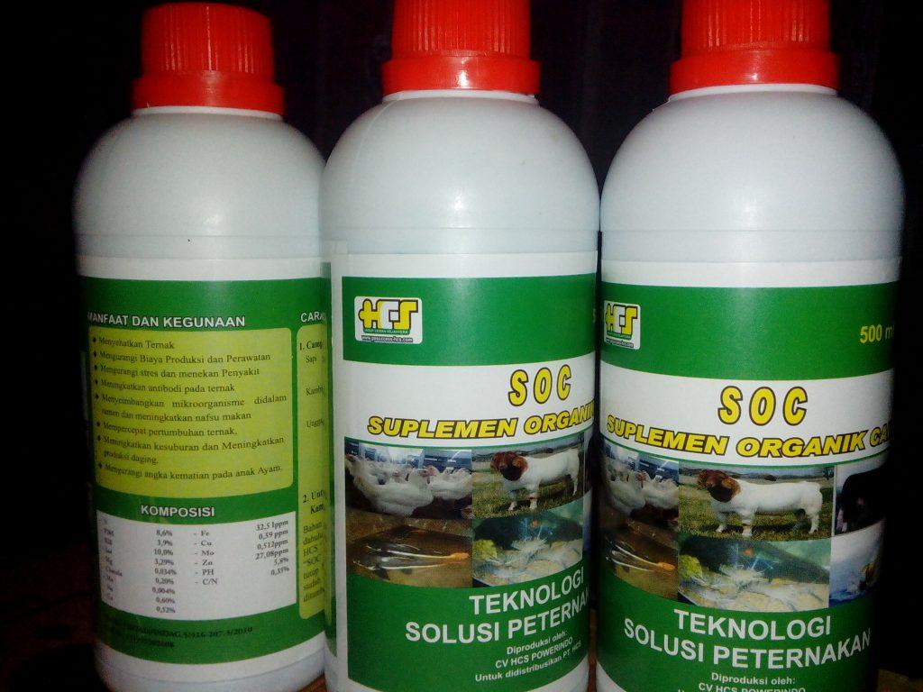 SOC HCS untuk Ternak Kambing Modern Tanpa Ngarit