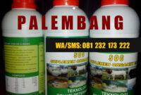 AGEN SOC HCS DI PALEMBANG