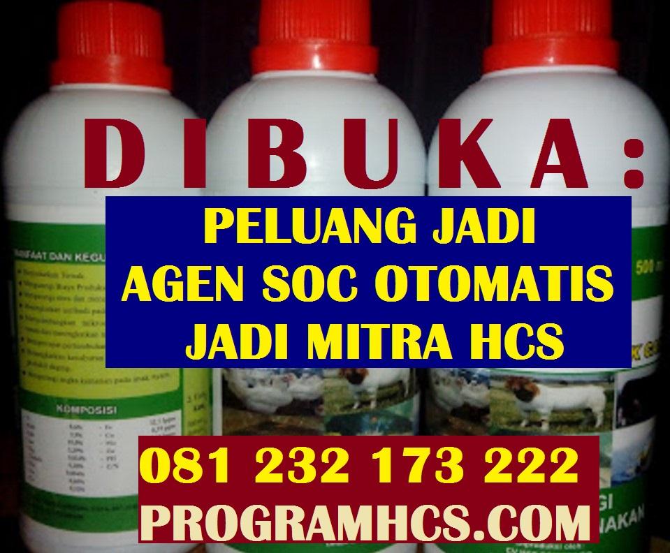 AGEN SOC HCS