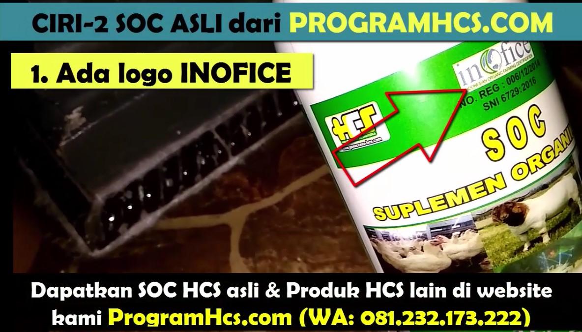 SOC HCS asli
