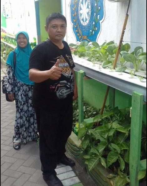 Pupuk Organik Cair untuk Sayuran Hidroponik