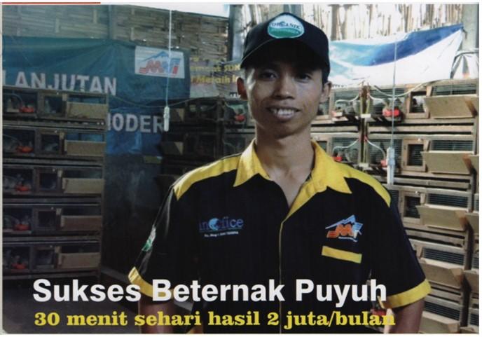 Beternak Puyuh Tanpa Bau Pola SOC HCS