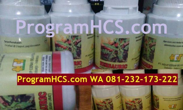 HerbaUric: Produk HCS untuk Kesehatan Atasi Asam Urat