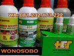 Agen SOC HCS, King Master, Bio Power Siap Kirim WONOSOBO