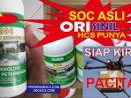 SOC HCS PACITAN