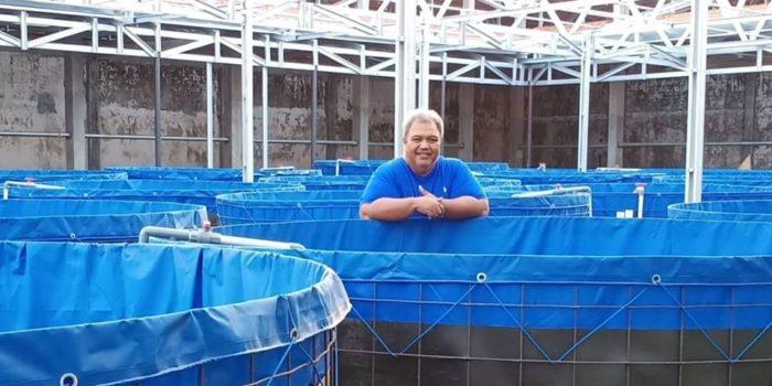 Sukses Ternak Lele Munir's Farm Prigen